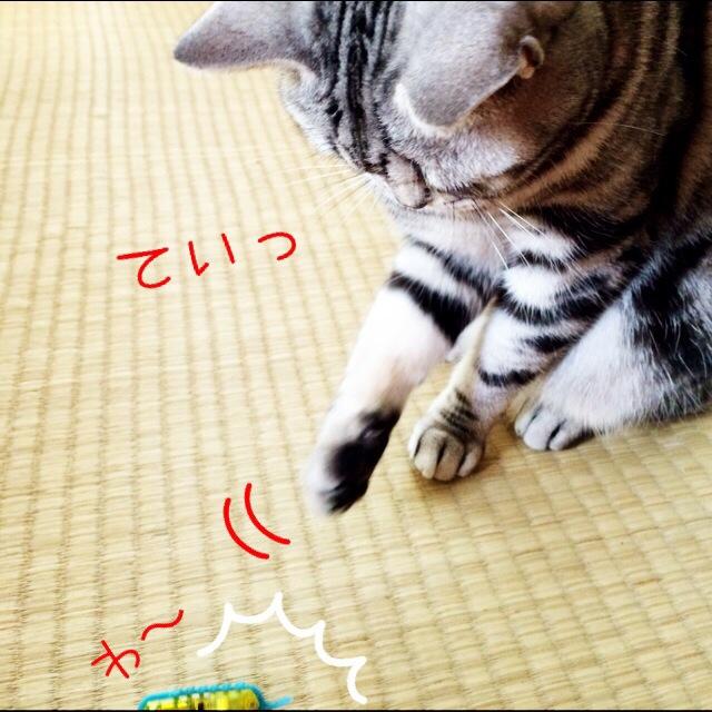 20140520-100912-36552244.jpg