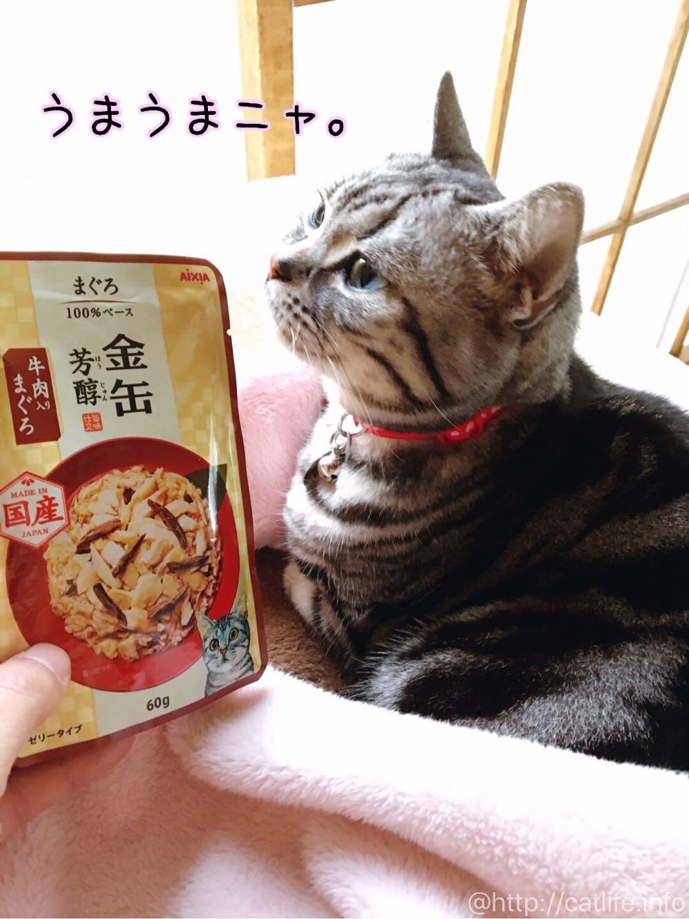 金缶「芳醇」うまうまニャ〜!